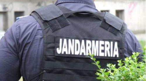 jandarmi1  Furt la Grădina Zoologică din Tecuci