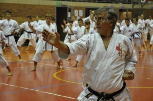 1fa1729561de6cf73bde263d3b54c816 L  De astăzi, la Galaţi, începe Campionatul European de Karate Fudokan