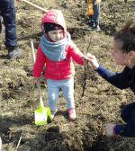 Am sădit stejari alături de copiii noştri!